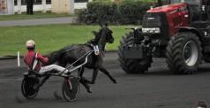Le cheval face à la machine (bis) : Mosaïque Face